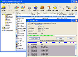 Internet Download Manager screenshot