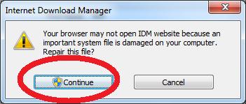 internet download manager tonec