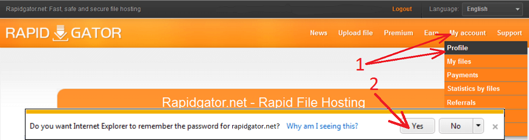 How to configure IDM to work with Rapidgator net site?